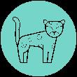 icono-jaguar